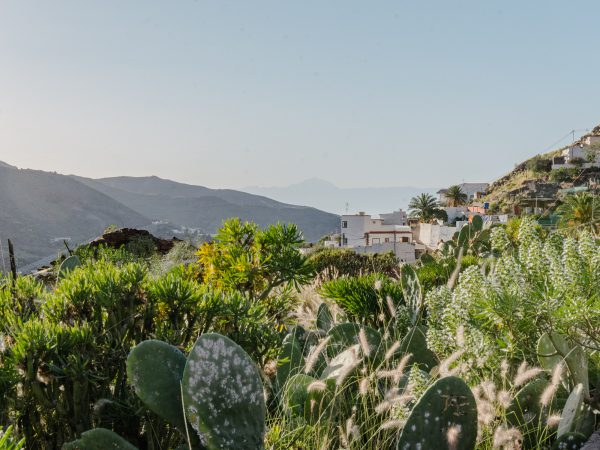 gran canaria - 5 hiking routes you can do with a baby