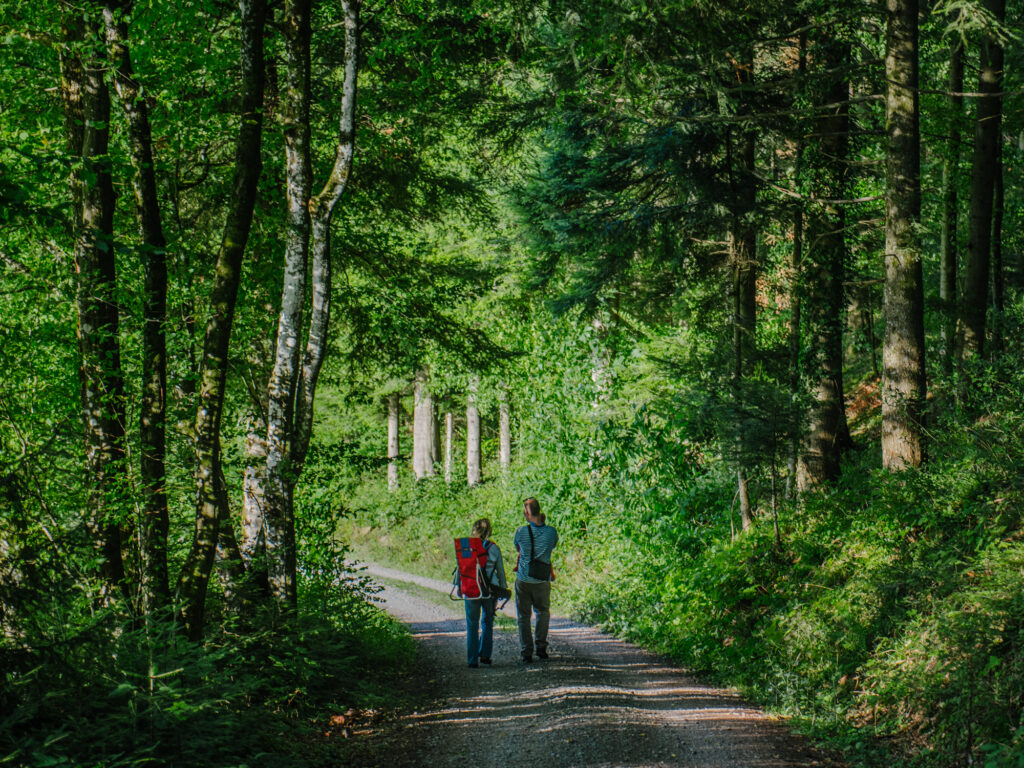 Is the Black Forest a Family Friendly Destination?