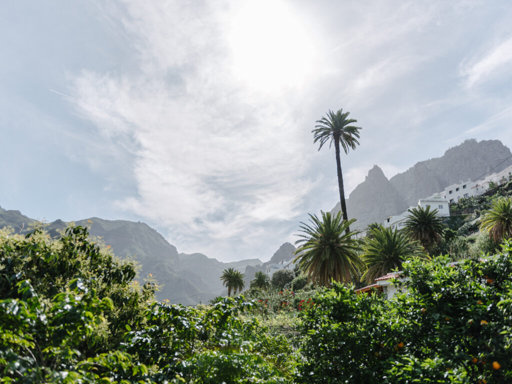Explore the Valley of Agaete - Gran Canaria's Paradise on Earth